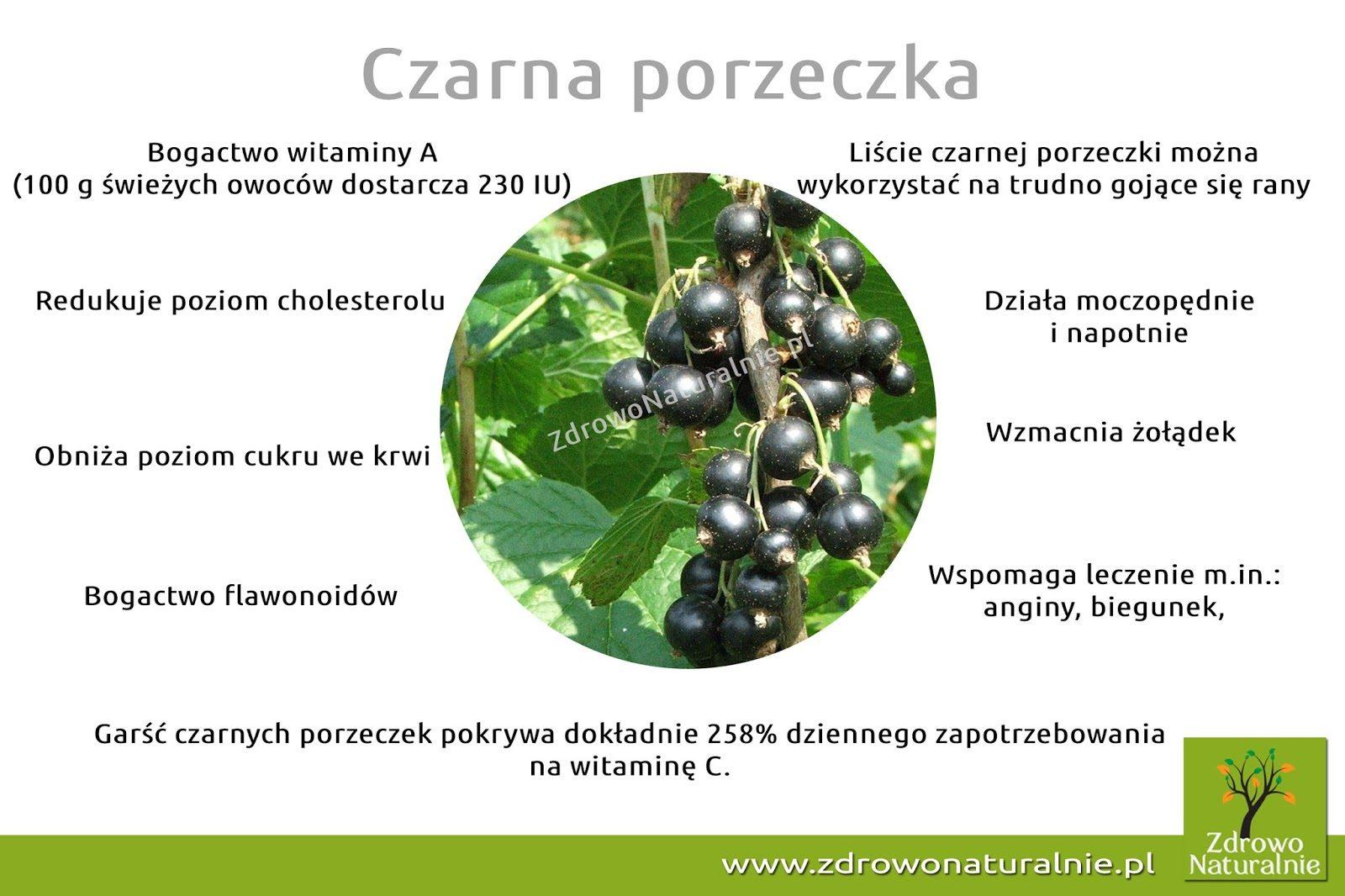 czarna2bporzeczka-5780132
