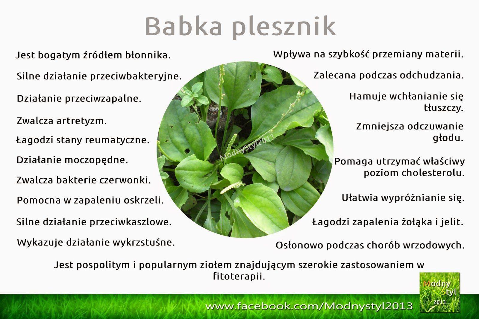 babka2bplesznik-5842253