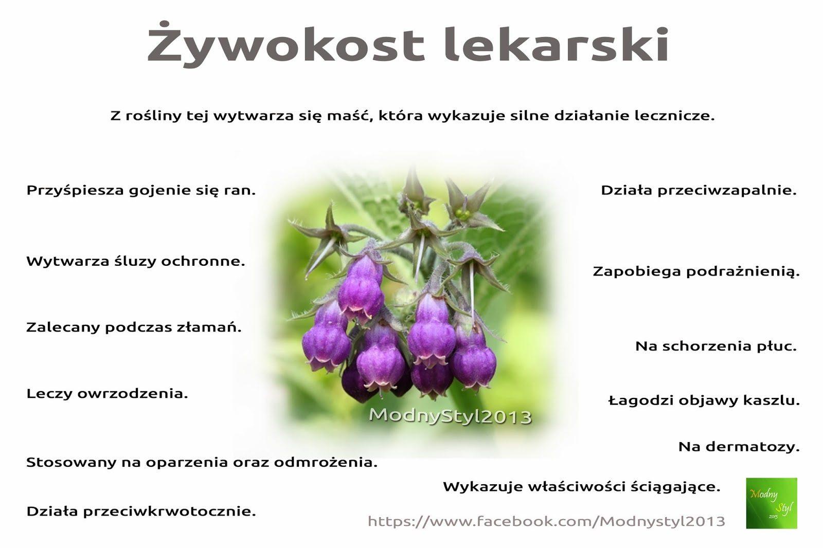 c5bcywokostlekarski-2118407