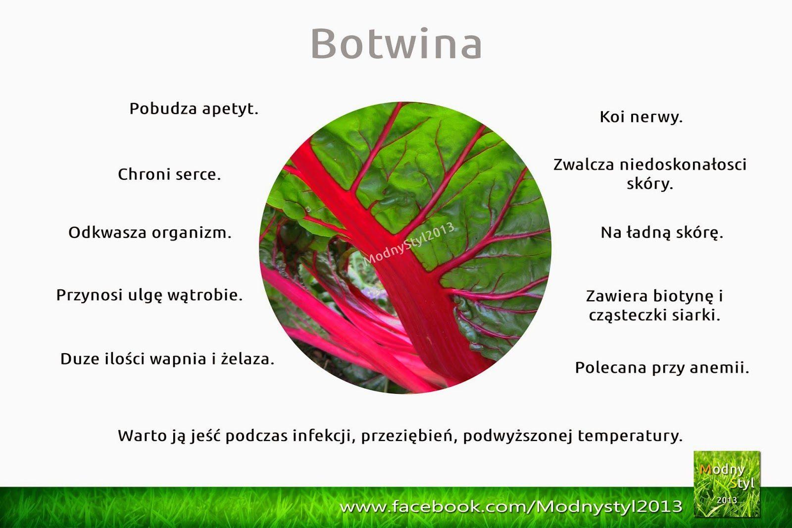 botwina-3376000
