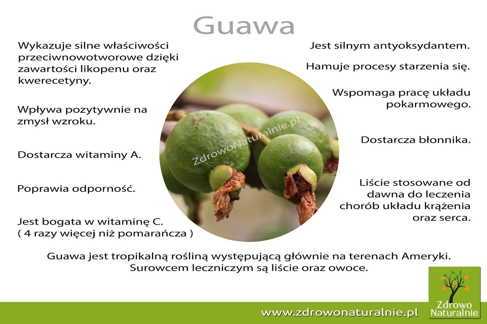 guawa-3079629