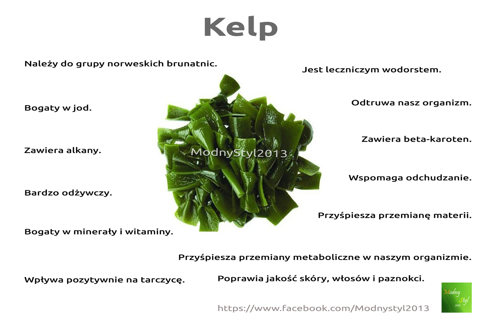 kelp-8617916