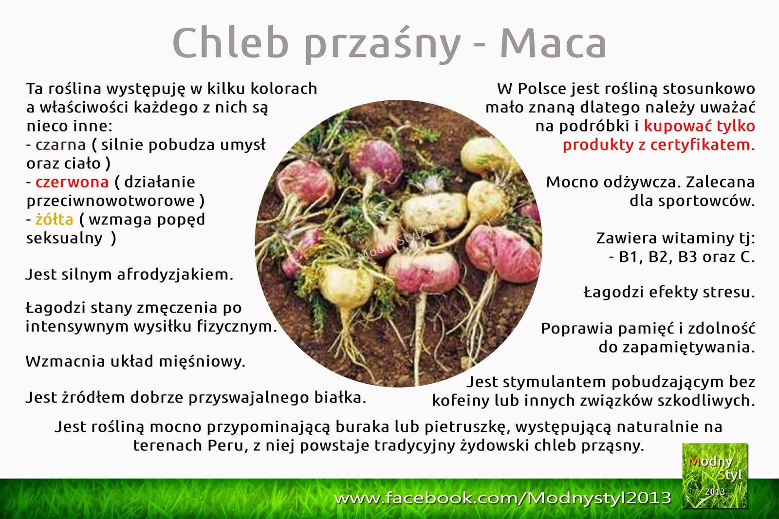 maca-5131104