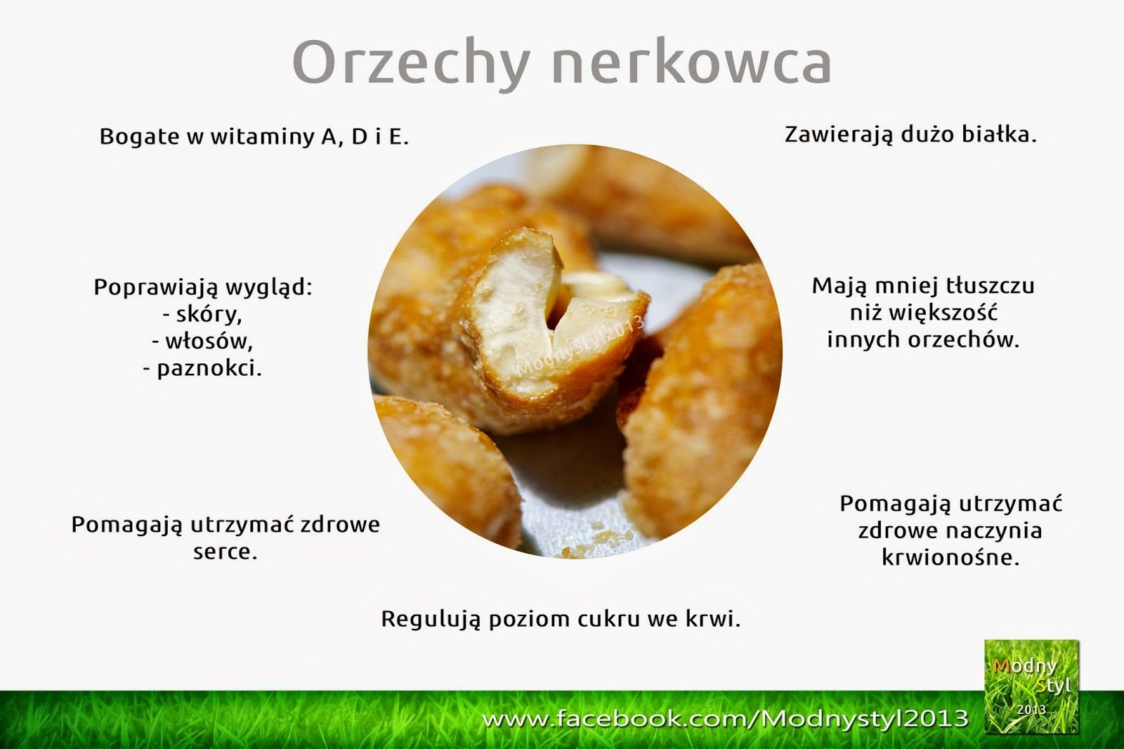 nerkowiec-8158978