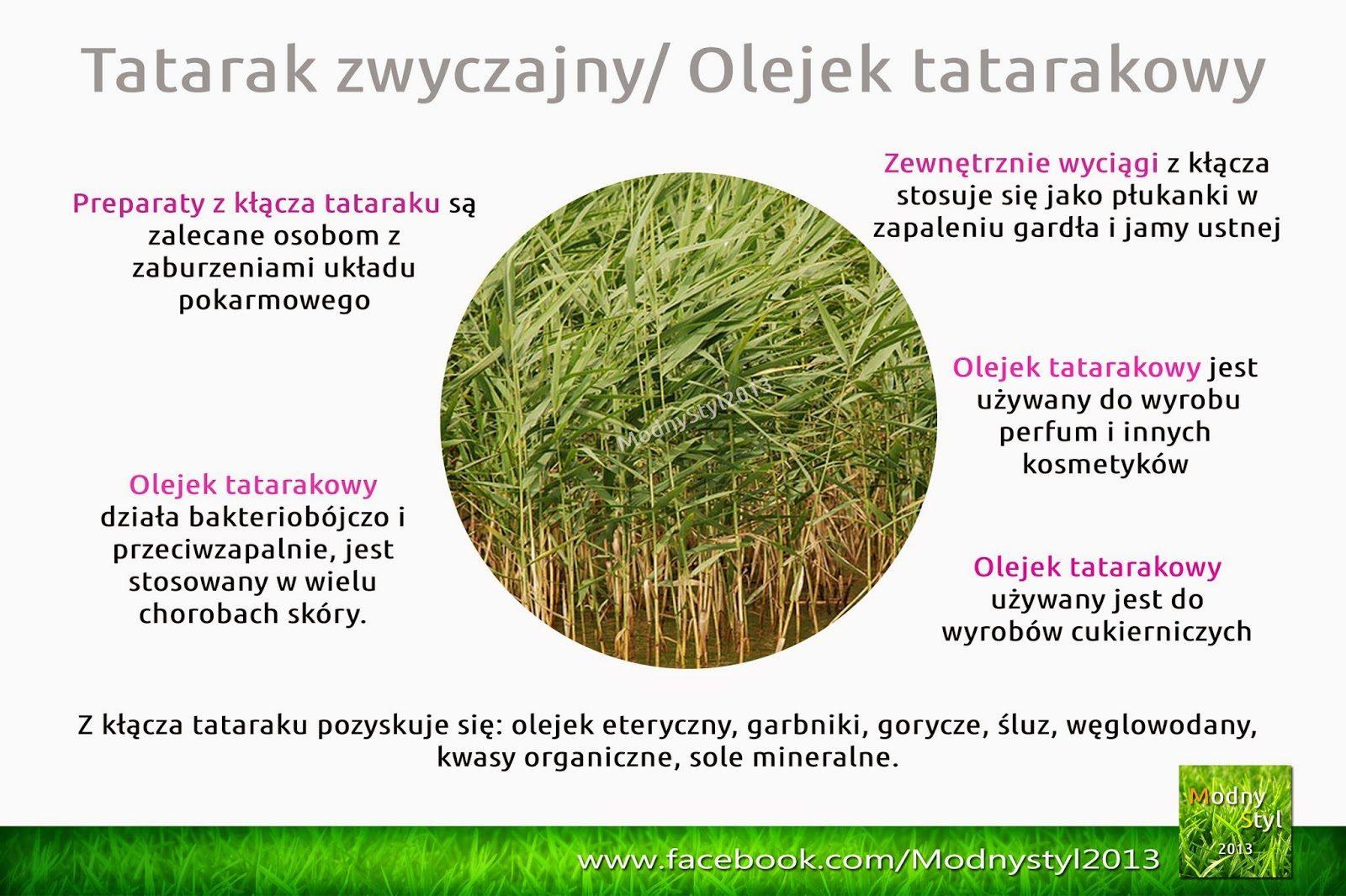 tatrak-5749366
