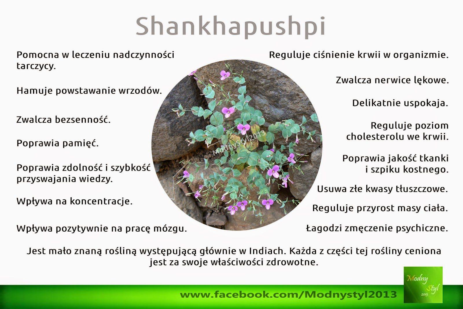 shankhapushpi2b-2bconvolvulus2bpluricaulis-6286954